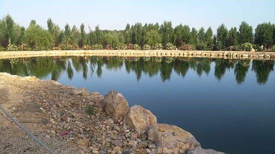 Paracuellos de Jiloca, İspanya: FB_IMG_1500822725358_large.jpg