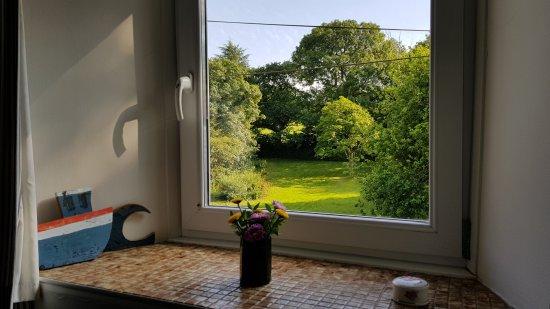 Little Pengelly Farm B&B: Vista sul giardino