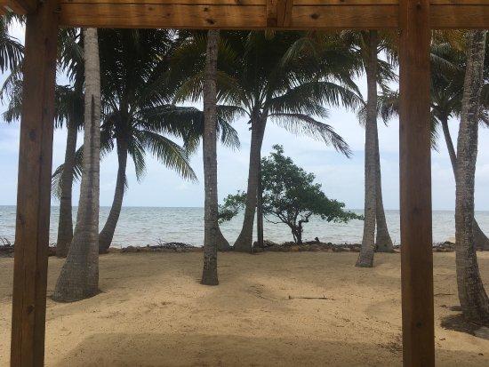 Pelican Beach - Dangriga: photo0.jpg