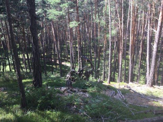 Castelrotto, Włochy: Sentiero dei Funghi