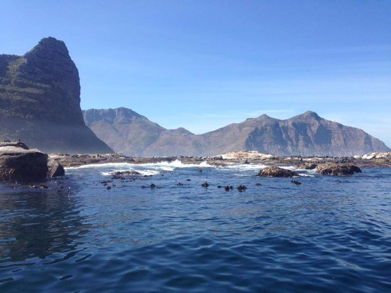 Hout Bay, Sydafrika: The ocean like a lake by Duiker Island on some snorkeling trips