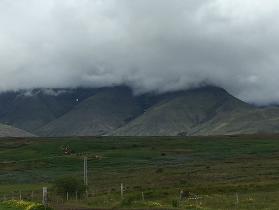 Mosfellsbaer, Iceland: Landscape for the trail ride