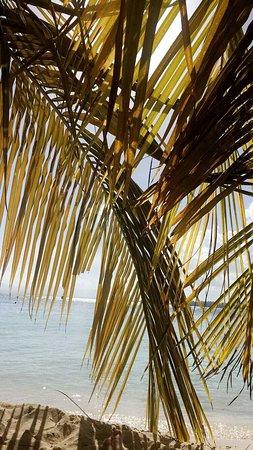 Le Gosier, Guadeloupe: photo2.jpg