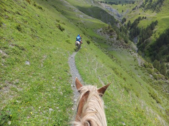 Dartlo, Georgia: horsebackriding to Chigo