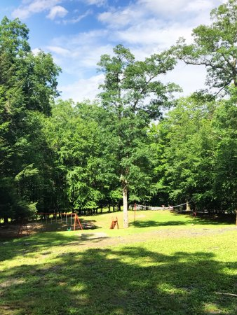 Cranberry Run Campground Picture