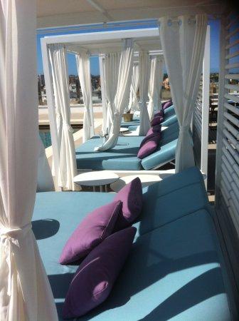 Indico Rock Hotel Mallorca Dachterrasse Mit Pool Und Balinesischen Betten Luxus Pur