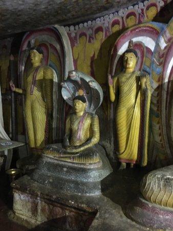 Dambulla - Buddha sheltered by cobras
