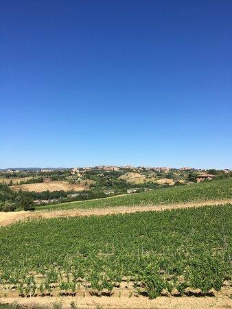 Agriturismo Castel di Pugna: views