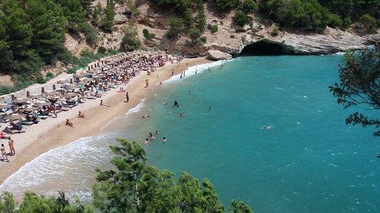 Pugnochiuso, Italien: spiaggia piccola