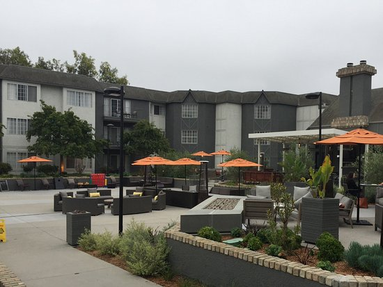 Del Mar, CA: A small section of the outdoor seating area. There are many areas to gather with friends and fam