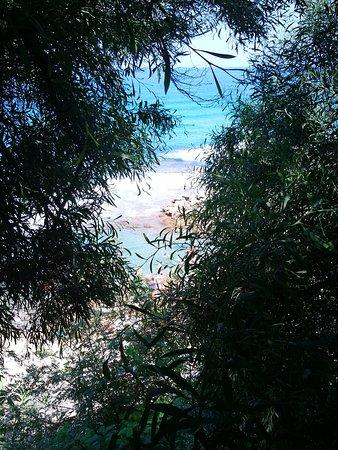 Villaggio degli Olivi : IMG_20170715_105420_large.jpg