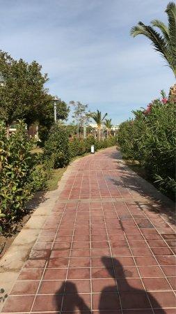Venosa Beach Resort & Spa: photo2.jpg