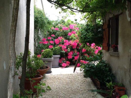 Azay-le-Ferron, Francia: vue du jardin