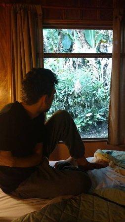 호텔 시프레세스 사진