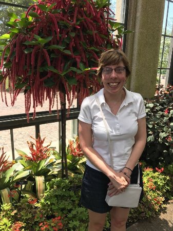 Kennett Square, PA: The beautiful sights of Longwood Gardens lilly pads, & Fountain shows