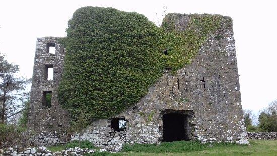 Headford, Ireland: What a fabulous ruin!