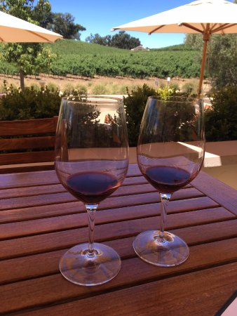 Paso Robles, CA: plenty of tables to sit at and relax with your wine