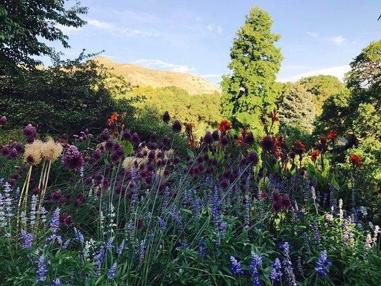 Red Butte Garden Picture Of Red Butte Garden Salt Lake City Tripadvisor