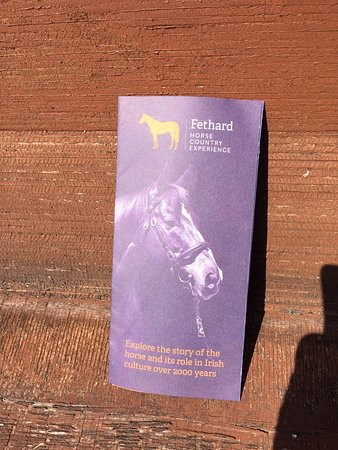 Fethard Horse Country Experience 이미지