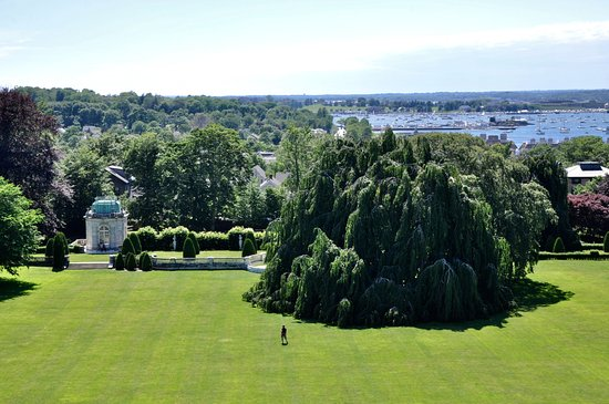 The Elms - View Of The Grounds From Rooftop