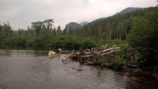 L'Anse-Saint-Jean, Canada: à la rivière