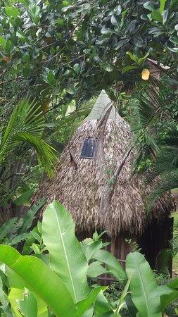 Carate, Costa Rica: Solar Panel