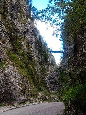 Rocca Pietore, Italia: Olha a estrada lá no alto....