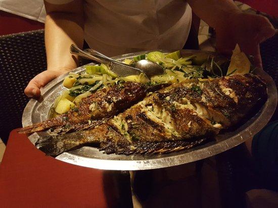 "Sipan, Kroatien: Amazing fresh ""Kirnja"" fish and smaller scorpion fish!"