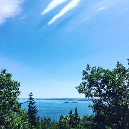 Camden, ME: Beautifully-maintained hiking trails, breath-taking views at the top, wild blueberries and great