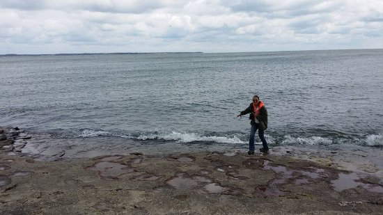 Marblehead, OH: yay! I touched Lake Erie!