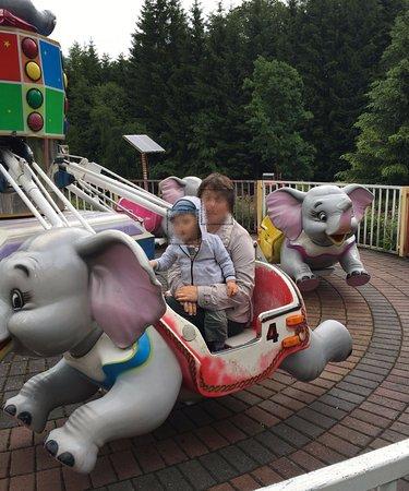 Bad Konigshofen, เยอรมนี: Auf dem Elefanten reiten