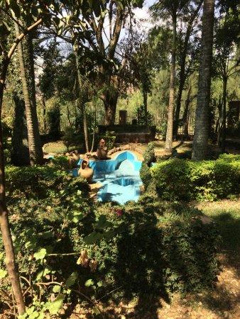 Primate Safaris: Part of the gardens at the Genocide Memorial