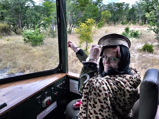 Parque Nacional de Hwange, Zimbabue: From Vic Falls we Imvelo's Elephant Express. Jean Ann got to drive and blow the horn.