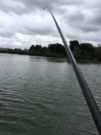 Oswestry, UK: Cracking couple of days fishing mixed bags all around with the wife catching her first carp and