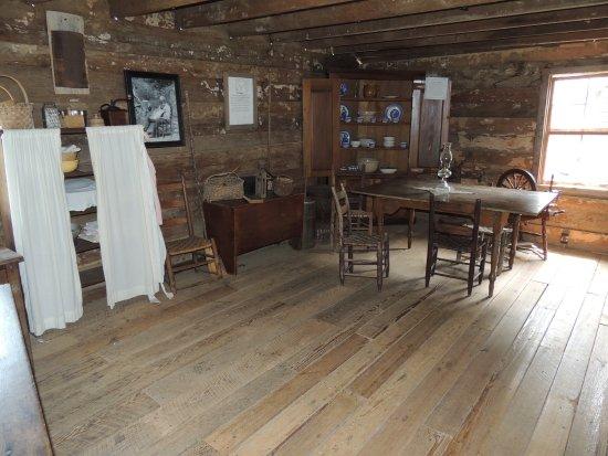 Townsend, TN: cabin