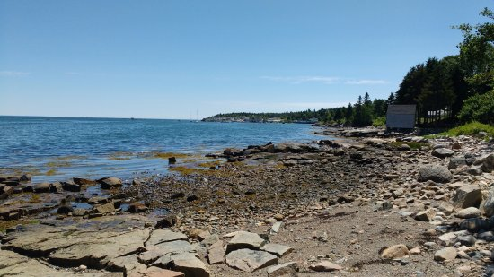 Prospect Harbor, ME: View from cabin deck (low tide)