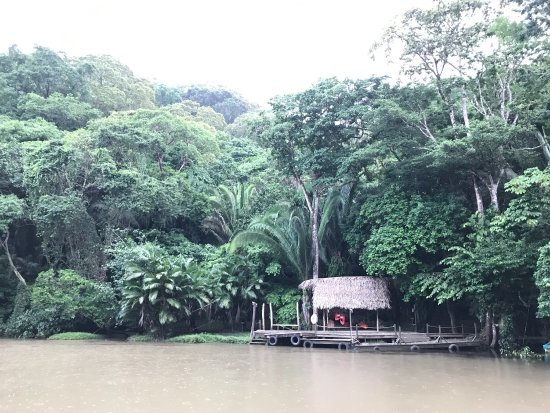 Belcampo Lodge: photo1.jpg