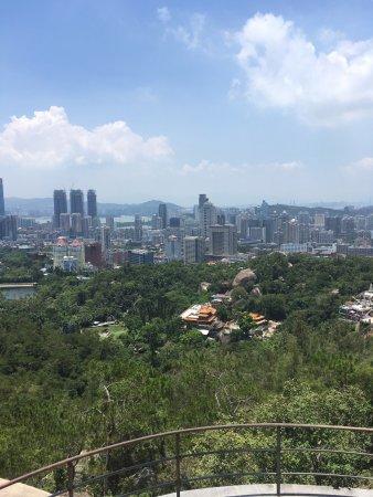 Xiamen Botanical Garden: photo7.jpg