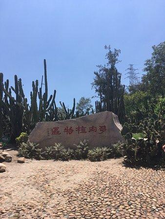 Xiamen Botanical Garden: photo8.jpg