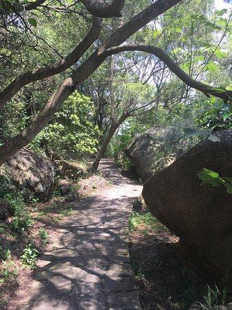 Xiamen Botanical Garden: photo9.jpg