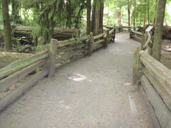 พอร์ตอัลเบอร์นี, แคนาดา: well developed trail