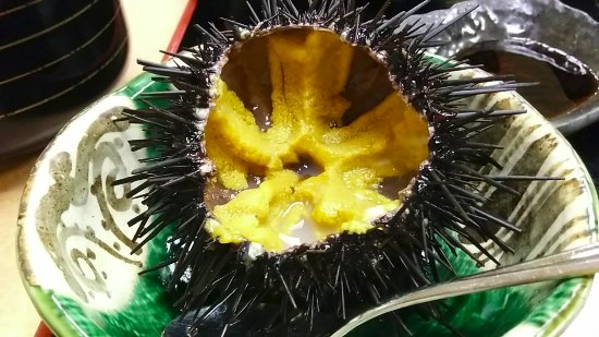 Hirono-cho, Japón: ウニを出してもらいました