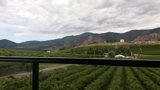 Manson, WA: View from the deck