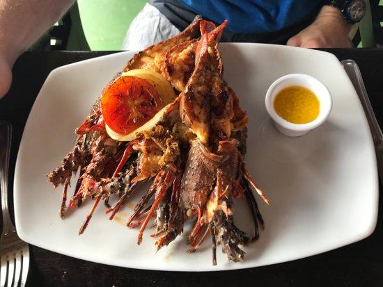 Playa Samara, Costa Rica: Yummy CR Dishes