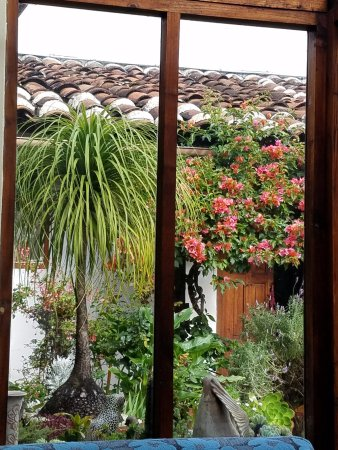 Bela's B&B: View from the dining room