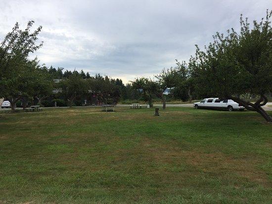 Deer Harbor, WA: Inn grounds