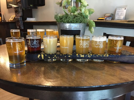 Elk Grove, Califórnia: Sampler flight