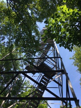 Grand Rapids, MN: Fire tower