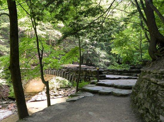 Dansville, NY: A bridge along the trail