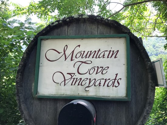 Mountain Cove Vineyards: photo1.jpg